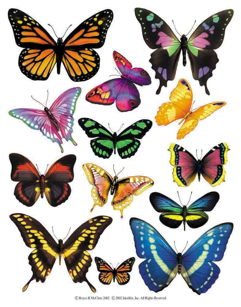 IdeaStix Butterfly 2-Sheet Accents - Original Premium Peel and Stick D??cor