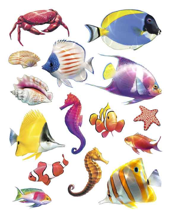 IdeaStix Tropical Colors 2-Sheet Accents - Original Premium Peel and Stick D??cor