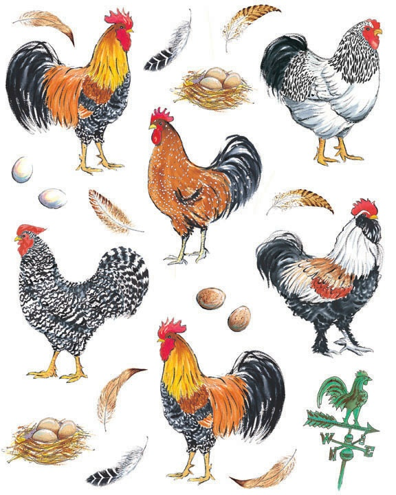 IdeaStix Pretty Boy Roosters 2-Sheet Accents - Original Premium Peel and Stick D??cor