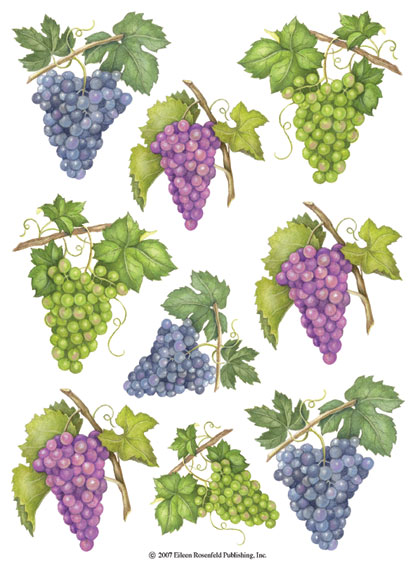 IdeaStix Grapes 2-Sheet Accents - Original Premium Peel and Stick D??cor