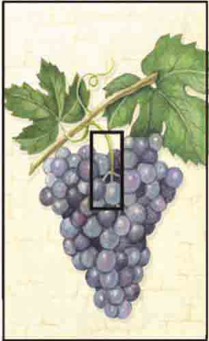 Grapes Single Toggle SwitchStix Peel and Stick Switch Plate Cover Décor
