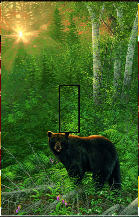 Black Bear 1B Single Toggle SwitchStix Peel and Stick Switch Plate Cover Décor