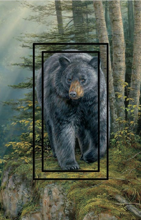 Black Bear 1A Single Rocker SwitchStix Peel and Stick Switch Plate Cover Décor