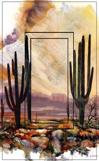 Sonoran Sentinel Single Rocker SwitchStix Peel and Stick Switch Plate Cover Décor