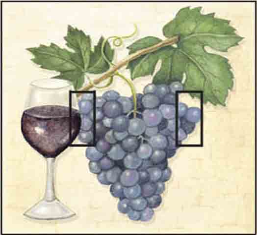 Wine Grape Double Toggle SwitchStix Peel and Stick Switch Plate Cover Décor