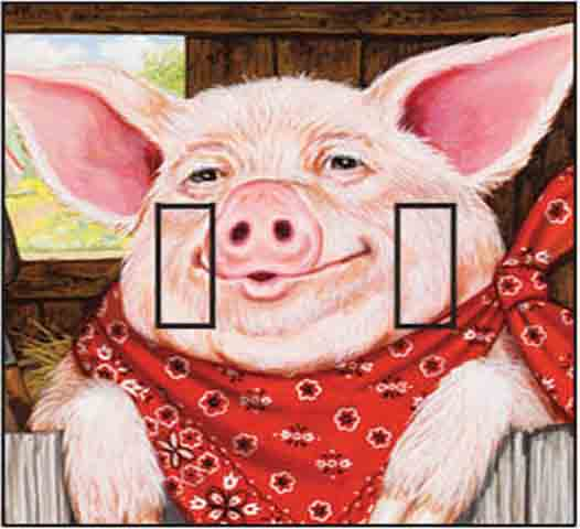 Farmer Pig Double Toggle SwitchStix Peel and Stick Switch Plate Cover Décor