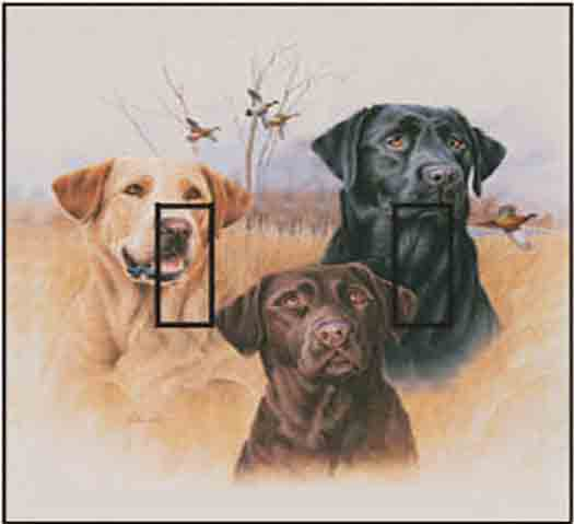 Great Hunting Dog Double Toggle SwitchStix Peel and Stick Switch Plate Cover Décor