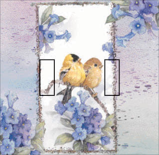 Goldfinch Summer Double Toggle SwitchStix Peel and Stick Switch Plate Cover Décor