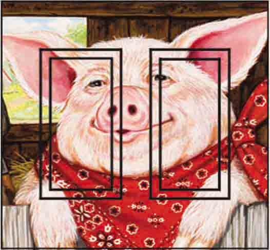Farmer Pig Double Rocker SwitchStix Peel and Stick Switch Plate Cover Décor