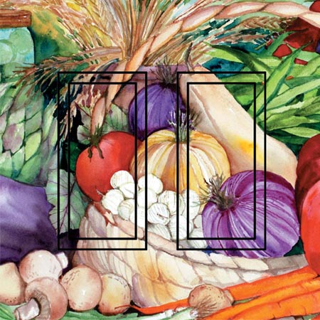 Vegetable Medley Double Rocker SwitchStix Peel and Stick Switch Plate Cover Décor