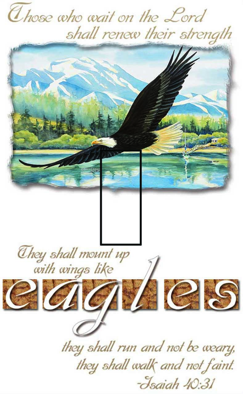 Isaiah 40:31 Single Toggle SwitchStix Peel and Stick Switch Plate Cover Décor